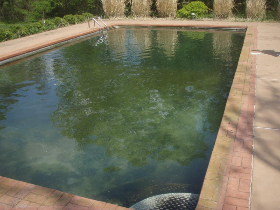 Green Algae Swimming Pools : Basic pool chemistry apco pools specialties inc