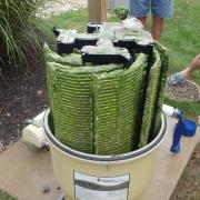 PROBLEM<Br>Algae Pact Grids