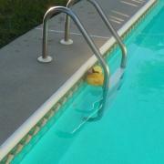 PROBLEM <br/>Chlorine Floater