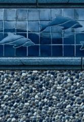 Royal Dolphin Tile<br>Bluestone